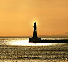 Light in the Darkness by Morag Bates