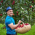 Farmer picking apples in a basket by naturalis