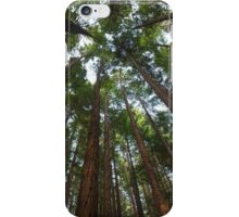Long Way To The Top iPhone Case/Skin