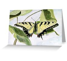 Male Eastern Tiger Swallowtail Greeting Card