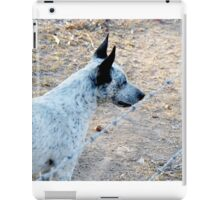 Lucky checking out the terrain iPad Case/Skin