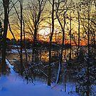Winter Sunlight by Eileen McVey