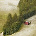 The Red Hut...Dolomites by Angelika  Vogel