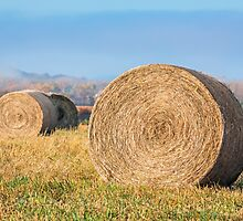 Round Hay Bales by Kenneth Keifer