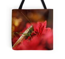 Grasshopper on a Red Flower Tote Bag