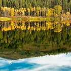 Autumn Reflections in the Pend Oreille River (2)  by Jim Stiles