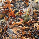 Ice And Oak Leaves by WildestArt