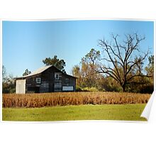 Barn Landscape Poster