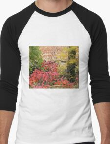 Country Blaze Men's Baseball ¾ T-Shirt