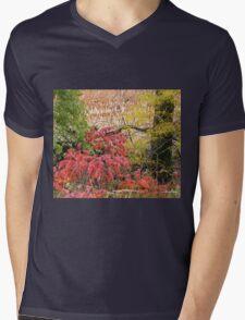Country Blaze Mens V-Neck T-Shirt
