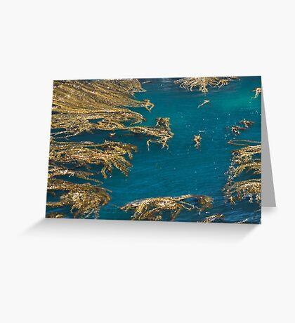 Decorative Sea Greeting Card