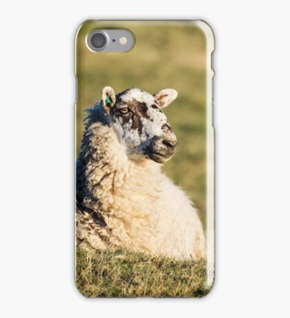 Sheep relax iPhone Case/Skin