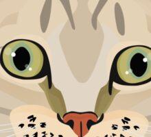 Tabby Cat Sticker