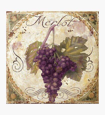 Tuscan Table Merlot Wine Grapes Photographic Print