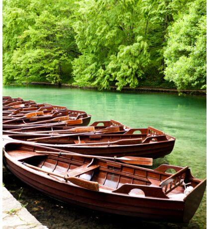 Row Boats Sticker