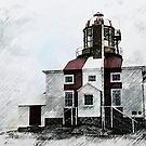 Cape Bonavista Lighthouse by Vickie Emms