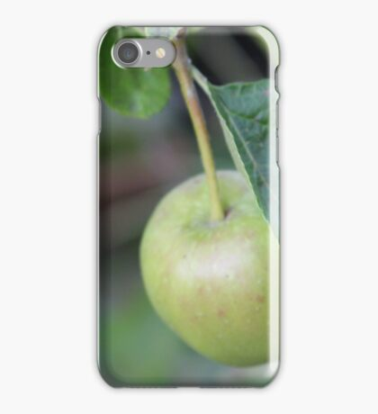Hanging from the tree iPhone Case/Skin
