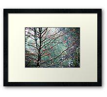 The Aura of Trees Framed Print