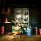 Gardener - The potters shed by Mike  Savad