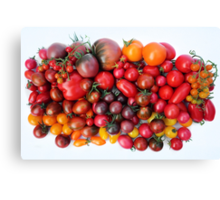 Tomatoes Are Red Canvas Print