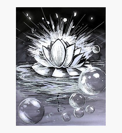 Waterlily Photographic Print