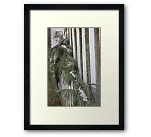 Garland Framed Print