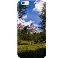 Alpine Scene iPhone Case/Skin