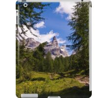 Alpine Scene iPad Case/Skin