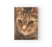 Belenus (Bel) - Tabby Cat Hardcover Journal