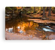 Autumn Reflection At The Top of Adams Falls Canvas Print