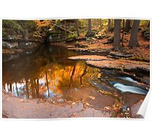 Autumn Reflection At The Top of Adams Falls Poster