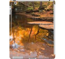 Autumn Reflection At The Top of Adams Falls iPad Case/Skin
