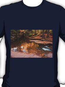 Autumn Reflection At The Top of Adams Falls T-Shirt