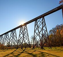 Tulip Trestle Sunburst by Kenneth Keifer