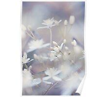 Peeking Flowers Poster