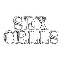 sexcells tshirt Photographic Print