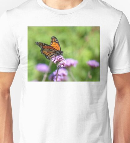Autumn Beauty! - Monarch Butterfly - Otago - NZ Unisex T-Shirt