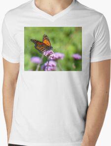 Autumn Beauty! - Monarch Butterfly - Otago - NZ Mens V-Neck T-Shirt