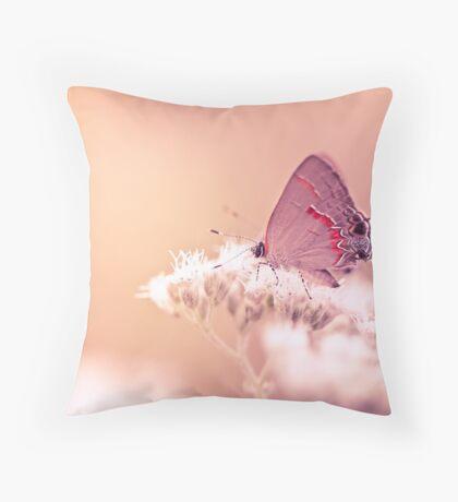 Hairstreak Butterfly On White Flower Throw Pillow