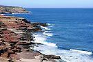 Kalbarri Coastline by Trish Meyer