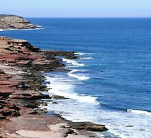 Kalbarri Coastline by Trish Meyer