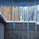 Irish Icicles by Ludwig Wagner
