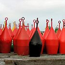 Buoys line up ready for the job by patjila