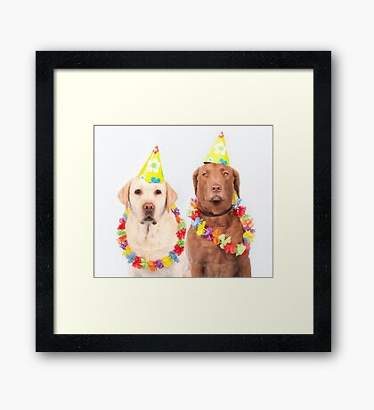Party pups Framed Print