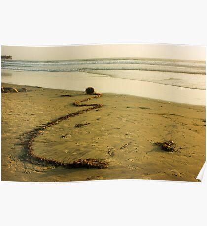 Ocean Gift -  Poster
