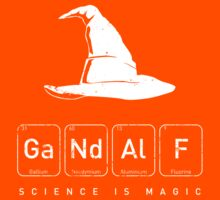 Gandalf's Magical Science Kids Clothes