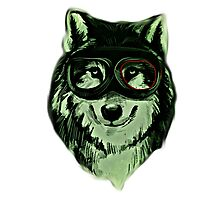 Wolf Hipster ANimal Wolves Photographic Print