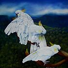 Cockatoo Lookout  Blue Mountains NSW Australia by Sandra  Sengstock-Miller