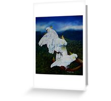 Cockatoo Lookout  Blue Mountains NSW Australia Greeting Card