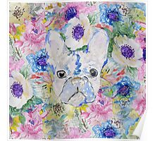 Abstract French bulldog floral watercolor paint Poster